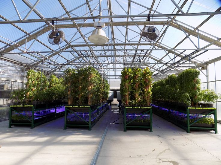 Our turn-key commercial Aquaponic systems are now available! We've worked extremely hard to create the most user friendly, highest yielding, and most beautiful commercial Aquaponics system on…