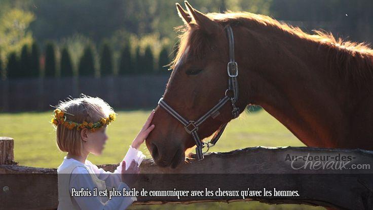 Parfois il est plus facile de communiquer avec les chevaux qu'avec les hommes.