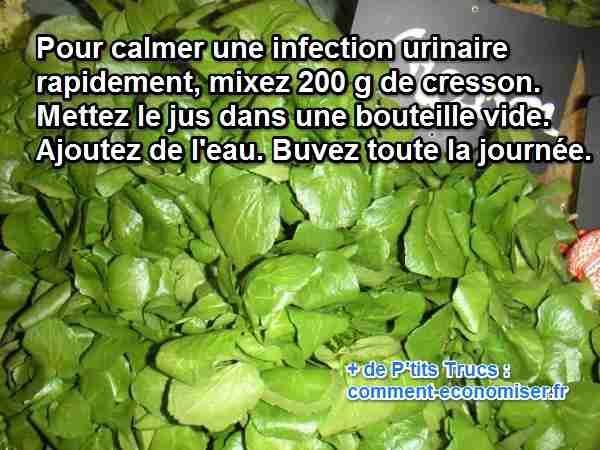 Ma grand-mère m'a confié un remède naturel pour apaiser rapidement les douleurs d'une infection urinaire. Pour soulager une infection urinaire, l'astuce simple et efficace est de manger du cresson. Découvrez l'astuce ici : http://www.comment-economiser.fr/calmer-infections-urinaires.html?utm_content=buffer23a68&utm_medium=social&utm_source=pinterest.com&utm_campaign=buffer