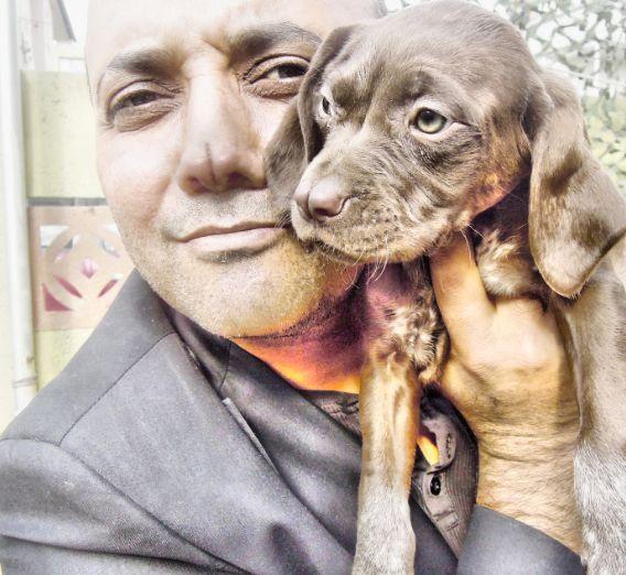 Tarsus çatalburun av köpeği www.tarsuscatalburun.org