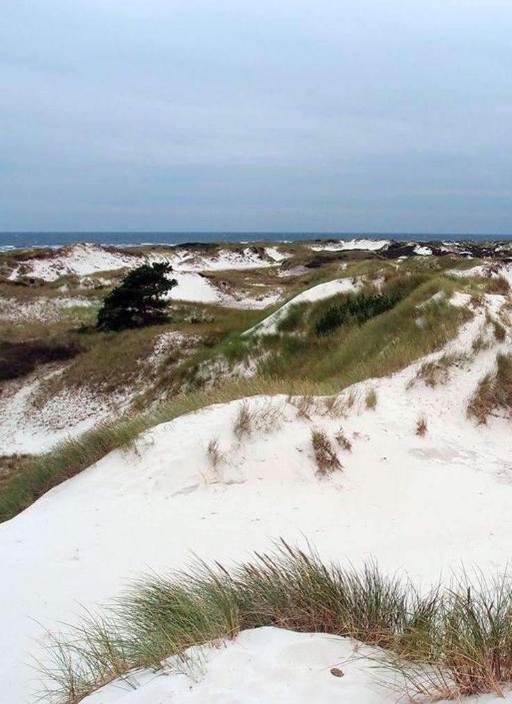 Along The Danish Coastline