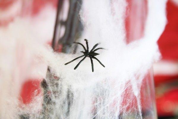 Arachnophobes s'abstenir ! La toile d'araignée géante nous rappelle que des petites bêtes à 8 pattes ont également été conviées à la fête !