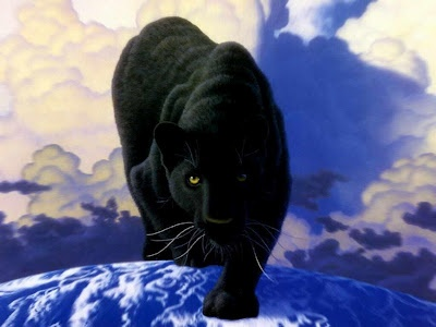 Fotos de Panteras Negras | Fotos Plus