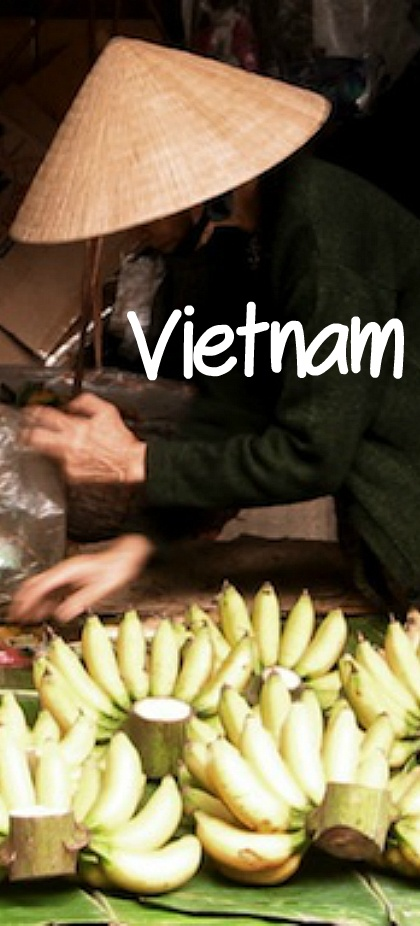 Vietnam Adventure Tours. Click here for details of great holidays