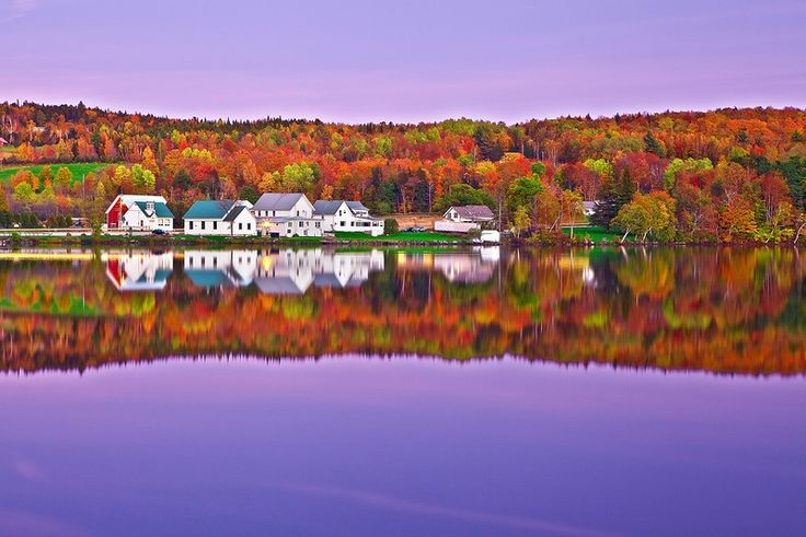 Vermont Foliage   photography by yazhang