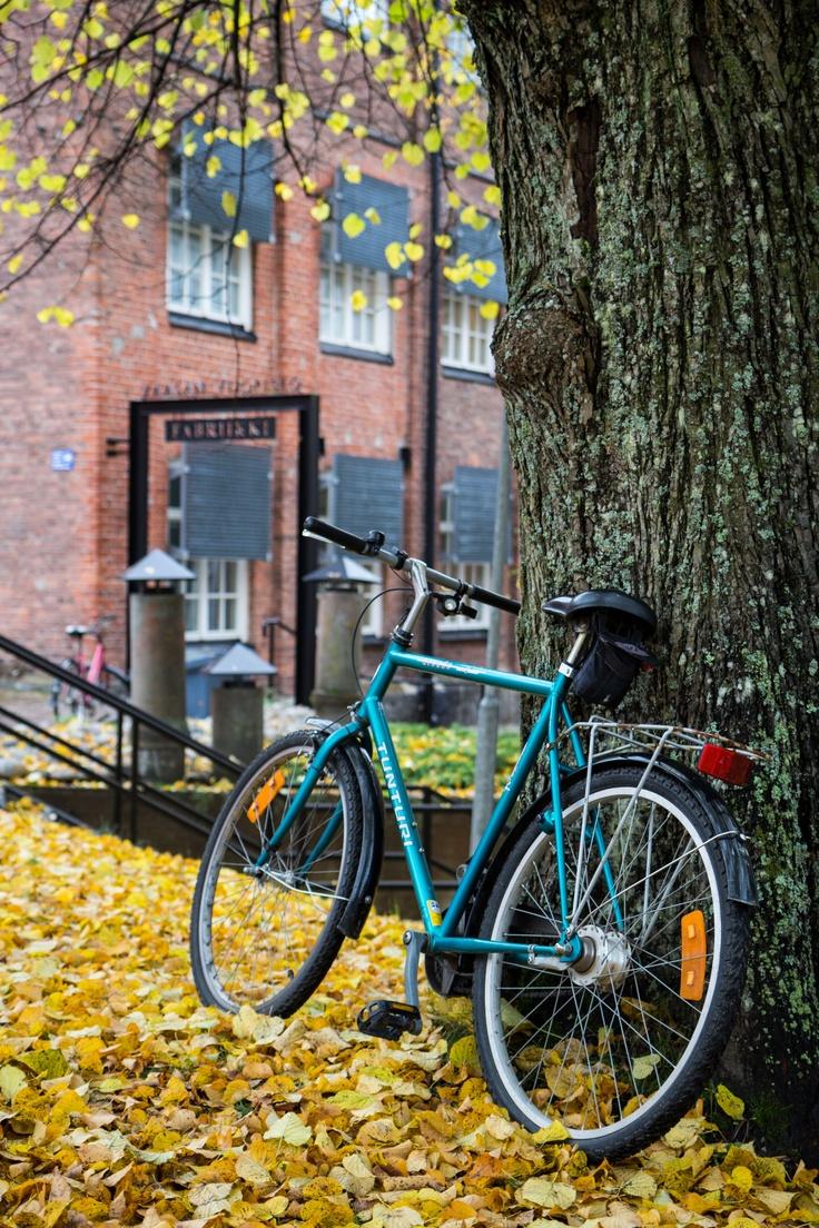 Autumn Campus - 1. #univaasa