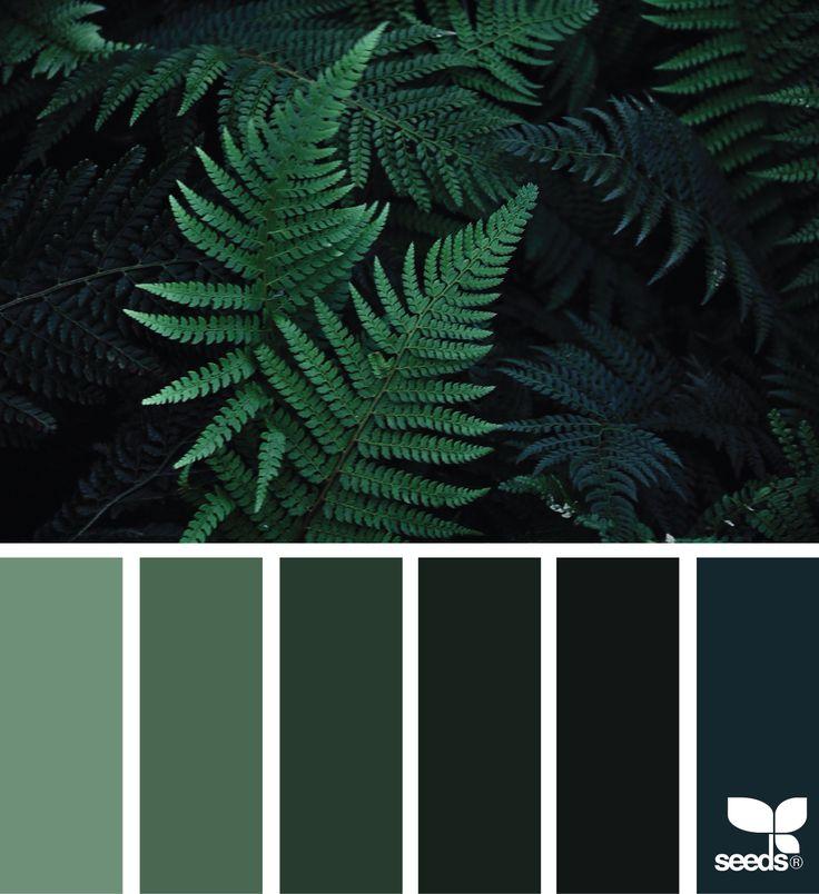 Nature Color Palet