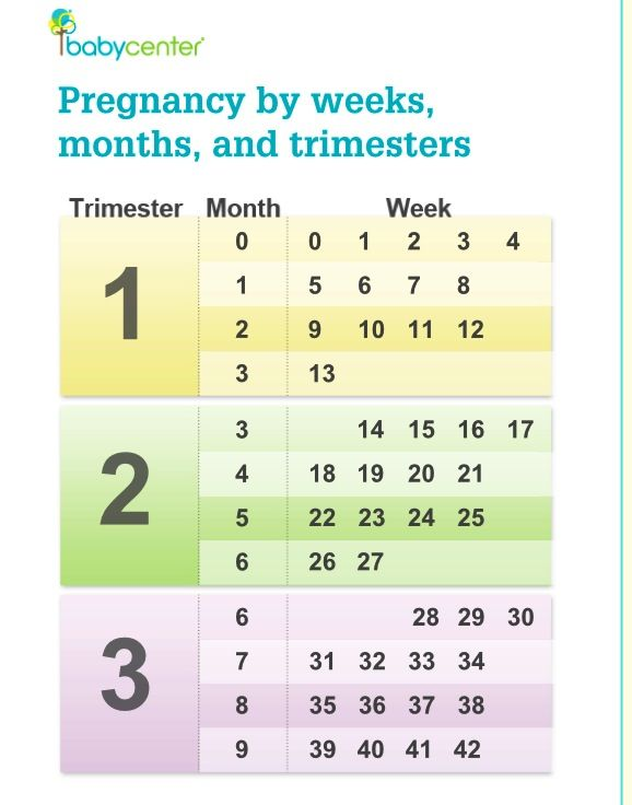 I always wondered how exactly to work this out! Pregnancy chart by trimester, months and weeks.