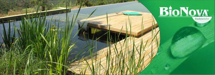 1000 ideas about schwimmteich kosten on pinterest schwimmteich and backyard fire pits. Black Bedroom Furniture Sets. Home Design Ideas