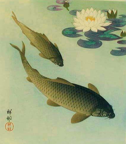 Two Carp and White Lotus. 1933. Shikishiban: 10 14/16 x 9 7/8 (sheet 10 10/16 x 9 11/16). Signed and sealed Shoson. Publisher: Watanabe Shozaburo. Illustrated: Crows, Cranes & Camellias, S39.5, p. 201.
