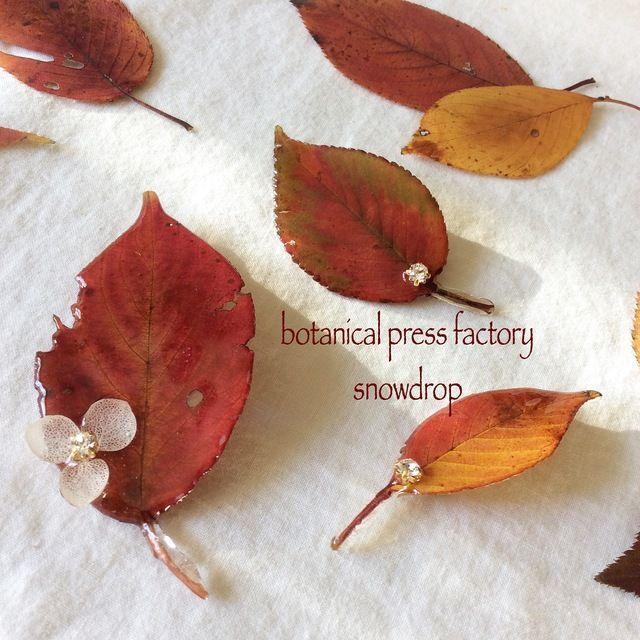 colored leaves<ブローチ>※大サイズ | ハンドメイド、手作り作品の通販 minne(ミンネ)