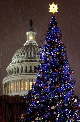Snow falls during the annual lighting of the Capital Christmas Tree.