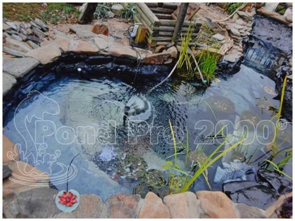105 best pond instructions images on pinterest epdm pond for Best koi pond liner