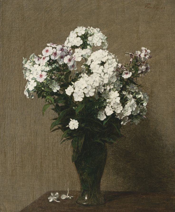 fantin-latour, henri phlox | flowers & plants | sotheby's n09498lot6j72yen