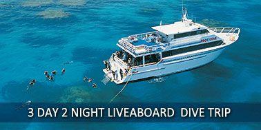 3 Day Great Barrier Reef Liveaboard Dive Trip Cairns - Pro Dive Cairns Scuba Diving - Australia  (2 night = $805)