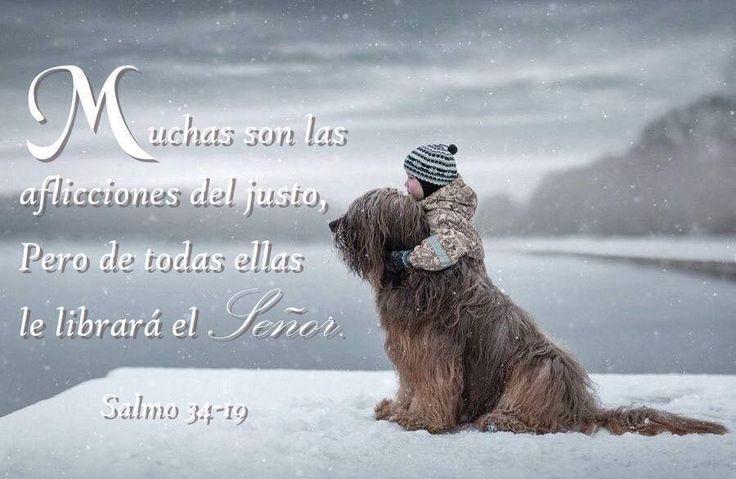 Palabras d Dios para Jóvenes. : Foto