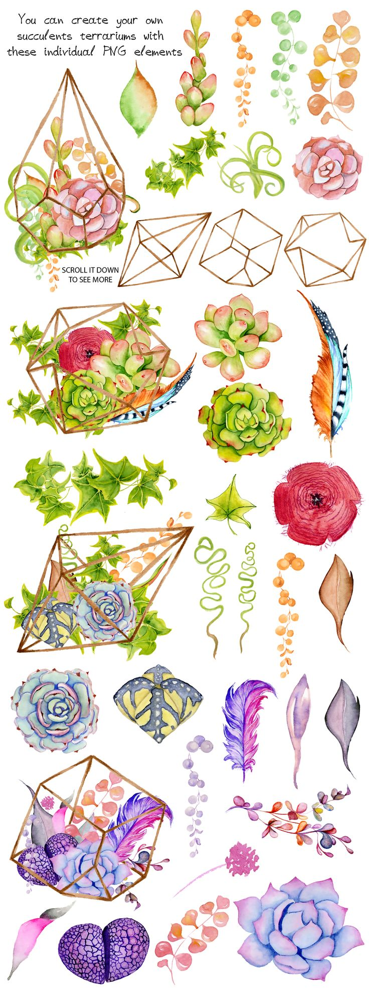 Watercolor Succulents and cactus terrariums. Cactus clipart. Hand painted clipart, succulents clip art.  Item details: 38PNG files (300 dpi, RGB, transparent background) size (wide side) aprox.: 1800-2400 px