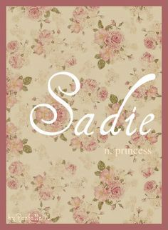 Baby Girl Name: Sadie. Meaning: Princess. Origin: German; English.