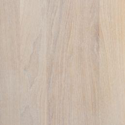 L9W Dąb bielony