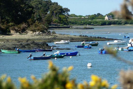 Vaste étendue bordant le Golfe du Morbihan, le territoire de Baden compte quatre îles : l'île du Rénaud, l'île du Grand Vézy, l'île du Petit Vézy et les Sept Iles.
