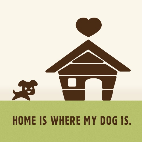 Home is where my dog is. #hund #dogsplaces