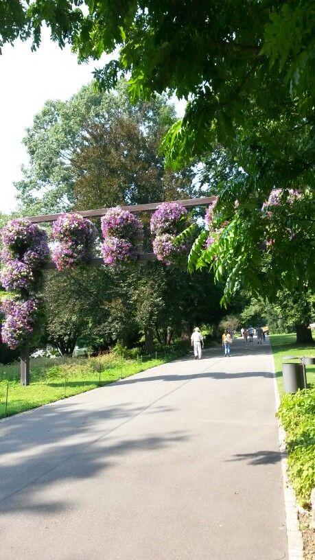 New Karlsruhe Zoologischer Stadtgarten