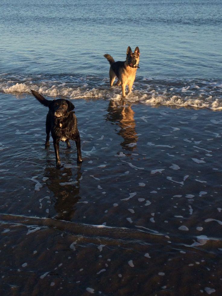 23.11.2014 - Clogherhead Beach