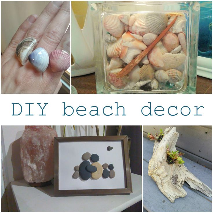66 best diy beach decor images on pinterest clam shells conch diy beach decor diy beach decor projects and diy craft ideas from crazydiymom solutioingenieria Choice Image