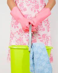 Pure wc-reiniger, zo gemaakt - Voedzo