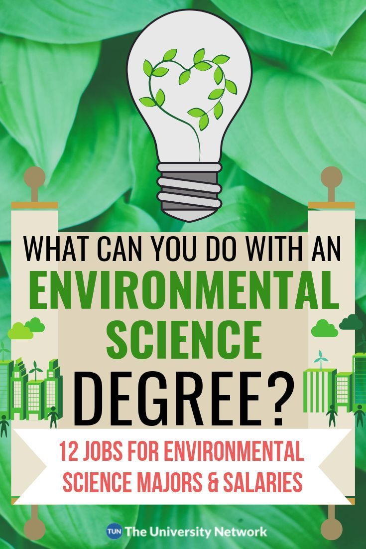 12 Jobs For Environmental Science Majors In 2020 With Images