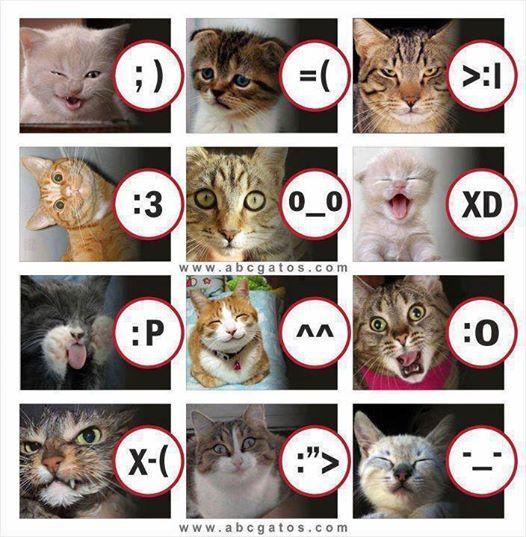 Apa emotion mu saat ini? - #GambarLucu - http://goo.gl/xGirzV