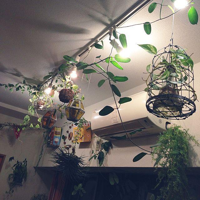ダクトレールを使って 天井インテリアを楽しもう ダクトレール