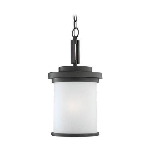 Modern Outdoor Hanging Light with Clear Glass in Forged Iron Finish at Destination Lighting