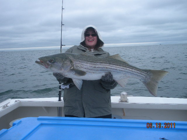 66 best images about cape cod charter fishing on pinterest for Cape cod fishing