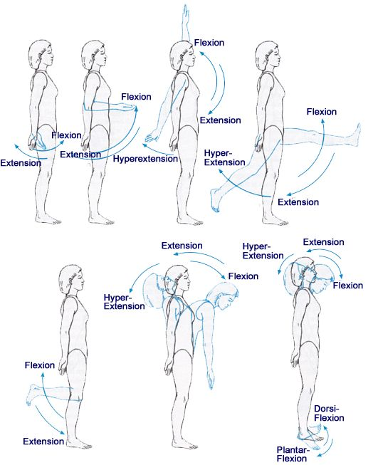 Axis and Planes of Motion | Flexion, extension, hyperextension,dorsiflexion, and plantar flexion