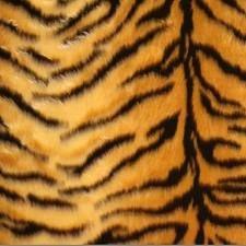 tijger met textuur - Google zoeken
