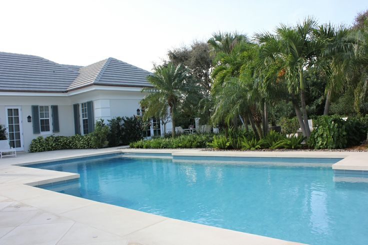 pool surrounded by lush Floridian vegetation