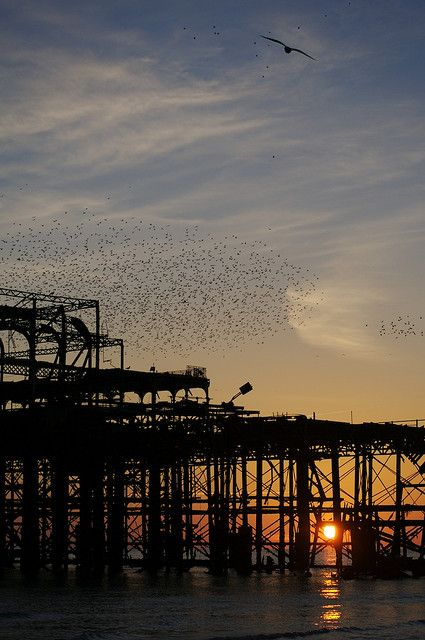 Brighton's West Pier. Brighton, England. Brighton counts with two piers, the modern one: Brighton Marine & Palace Pier, from 1891. And the West Pier, from 1866 which was closed in 1975 and has slowly become the 'enigmatic' carcass above. If one approaches Brighton by car or coach through the west side of the coast the view of this dead pier is one of the first long-lasting impressions one gets from the city.