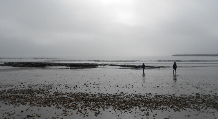 eternal winter - the beach can still be beautiful in the grey mist