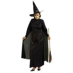 The Wizard of Oz Wicked Witch Adult Costume #witchcostumes #Halloween coupons discounts savings clearance specials blowouts New for 2013 http://www.planetgoldilocks.com/halloween/witchcostumes.html  #witchcostumes
