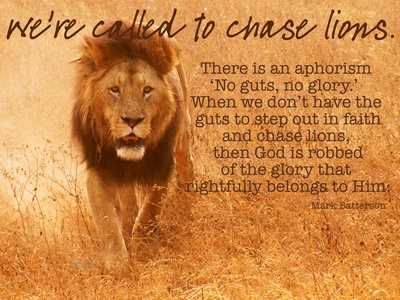 Image result for chasing lions
