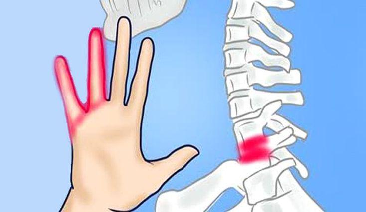 Seguro que alguna vez has notado una sensación de hormigueo en las manos , algo que suele ocurrir por una breve interrupción de la circulación sanguínea en dichas extremidades.        No debemos pasar por alto el adormecimiento