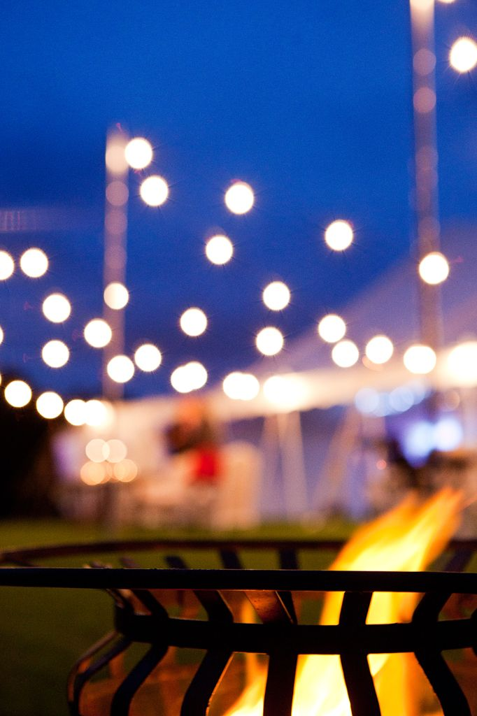 Marquee wedding. Festoon lights. Real Wedding: Joy and James in a Marquee in Maleny | The Bride's Tree - Sunshine Coast Wedding