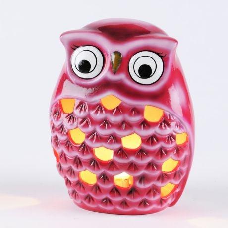876 Best Owls Images On Pinterest Diy Modeling And