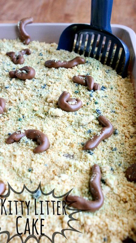Kitty Litter Cake Tutorial ~ An absolutely disgusting looking but mighty tasty cake that looks like a Kitty Litter Box... Perfect for Halloween or April Fools Day