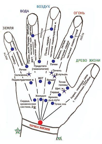 Самомассаж точек на кистях рук.Самомассаж точек на кистях рук. | МАССАЖИ | Постила