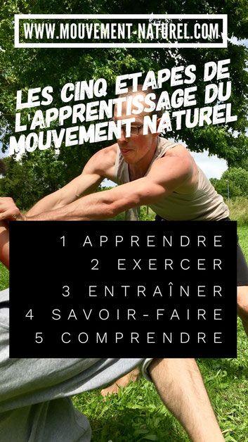 #mmn #mouvementnaturel #fitness #pleineconscience #présence #nature #fit4reality #mouvement #Jeromepinard #apprentissage