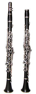 Klarinet je jednoplátkový dřevěný hudební nástroj. Název pochází z italského clarinetto - malá trubka, neboť jeho zvuk ve vyšších polohách připomíná zvuk trubky (clarina). Z klarinetu se vyvinuly další nástroje, například saxofon.