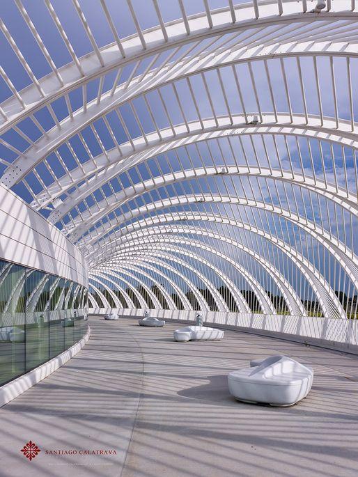 Florida Polytechnic University | Santiago Calatrava; Photo © Alan Karchmer for Santiago Calatrava | Archinect