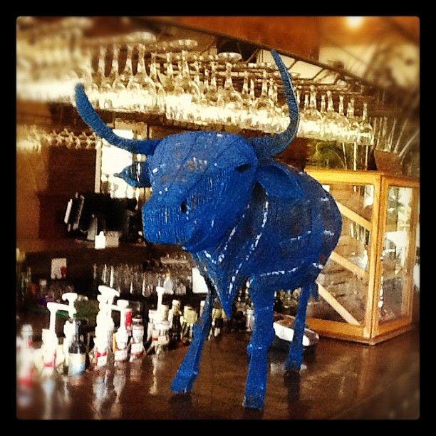 Bulls country, dare I say blue :) -- at moyo Fountains